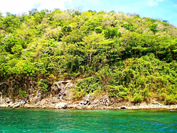 Sicogon Island Shore