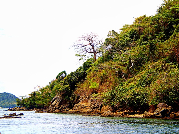 Wonders of Sicogon Island